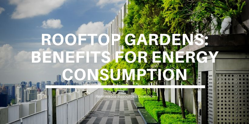 Rooftop Gardens & Their Effect On Energy Consumption | 2020
